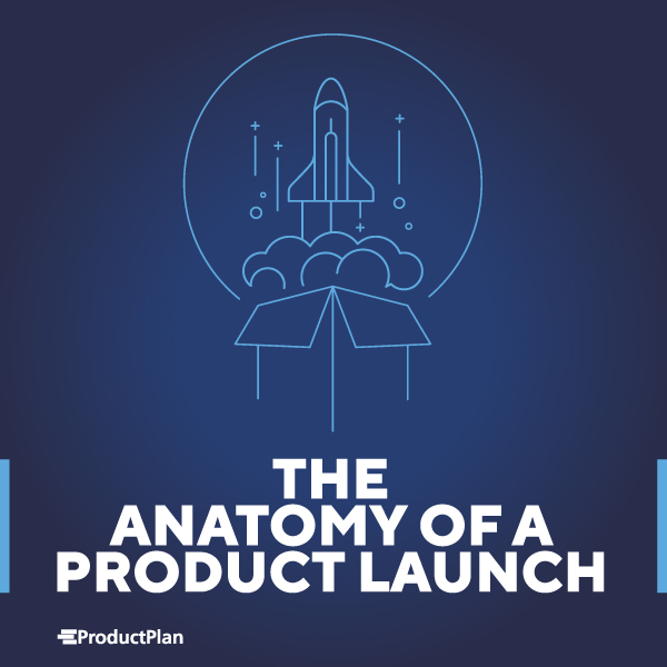 Product Launch Book